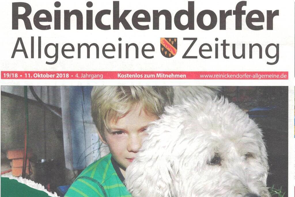Reinickendorfer AZ Presseartikel über feinjemacht